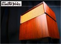 Electro Voice Carlton ◇エレクトロヴォイス カールトン 3 Way シングル◇
